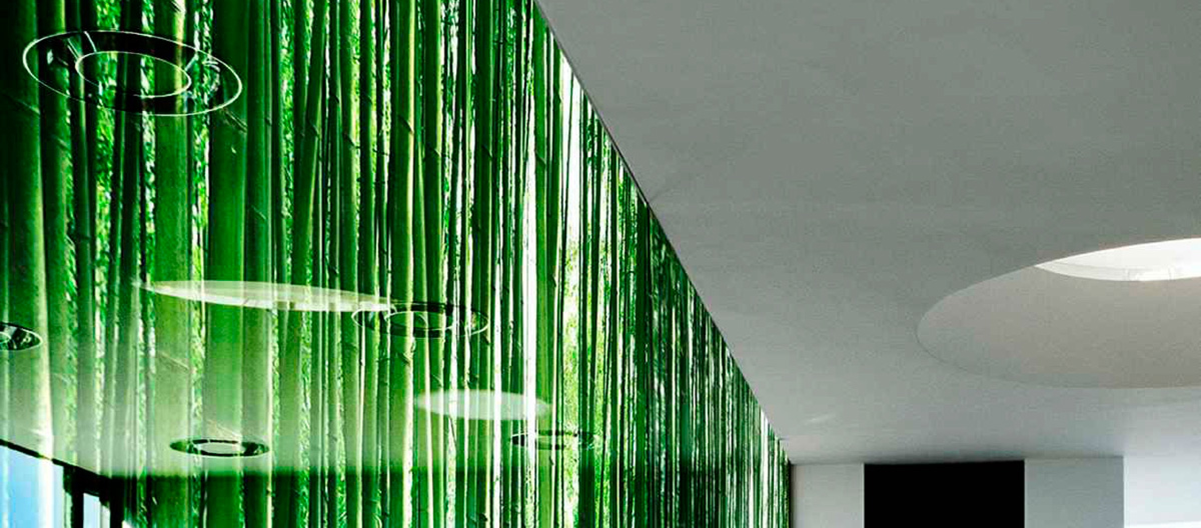 Habitat Glass