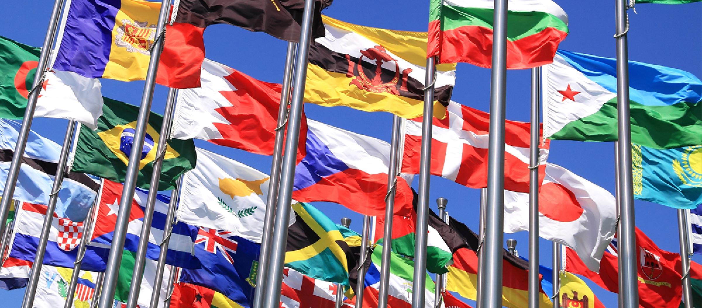 Signage Bandiere e Striscioni